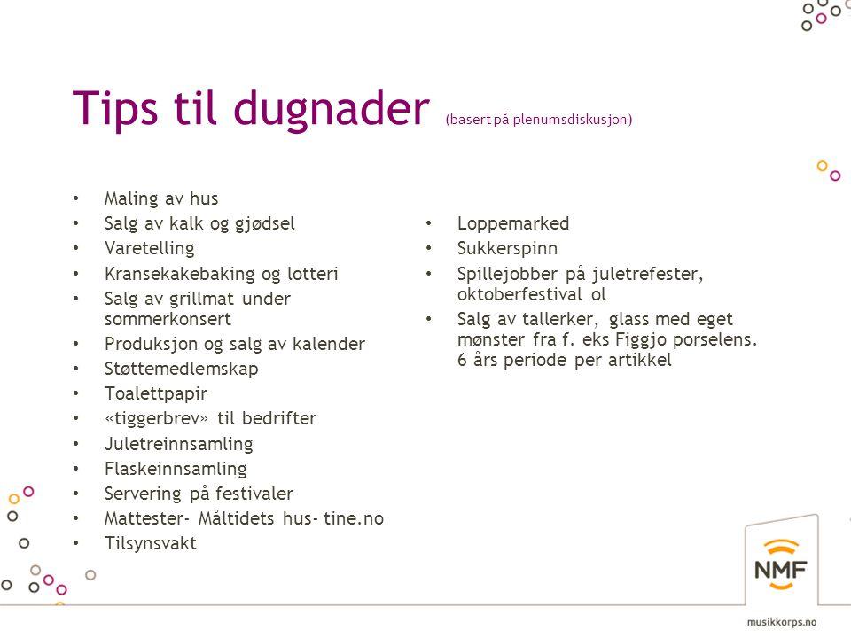 Tips til dugnader (basert på plenumsdiskusjon)