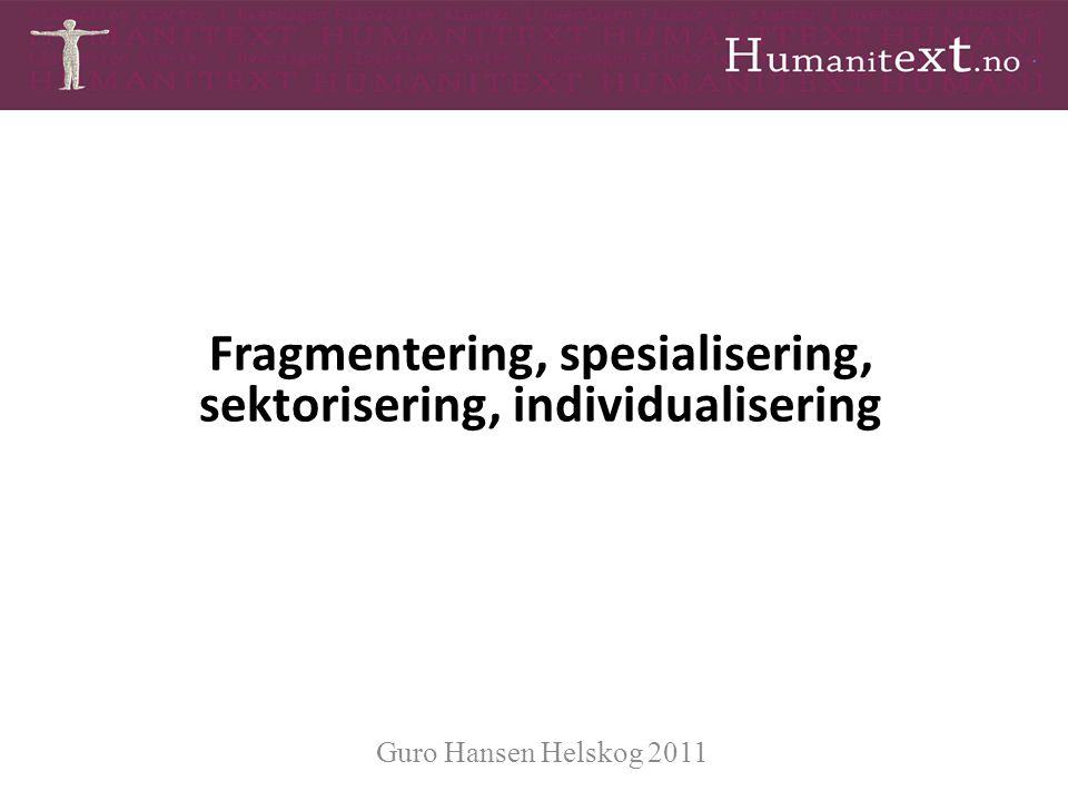 Fragmentering, spesialisering, sektorisering, individualisering