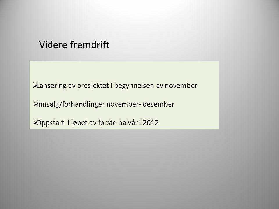 Videre fremdrift Lansering av prosjektet i begynnelsen av november