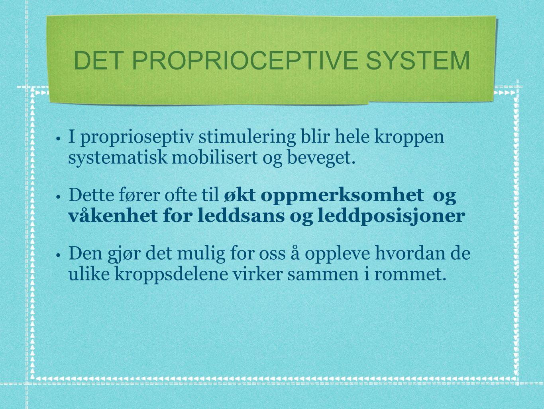 DET PROPRIOCEPTIVE SYSTEM