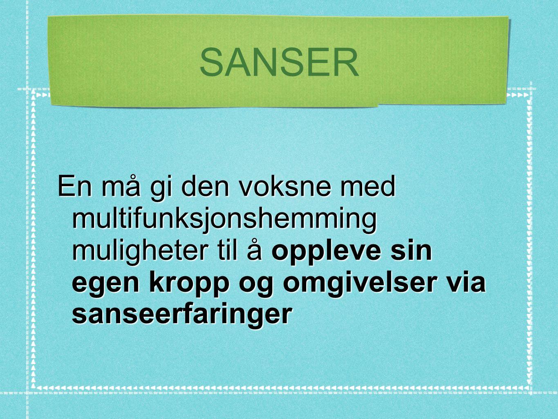 SANSER En må gi den voksne med multifunksjonshemming muligheter til å oppleve sin egen kropp og omgivelser via sanseerfaringer.