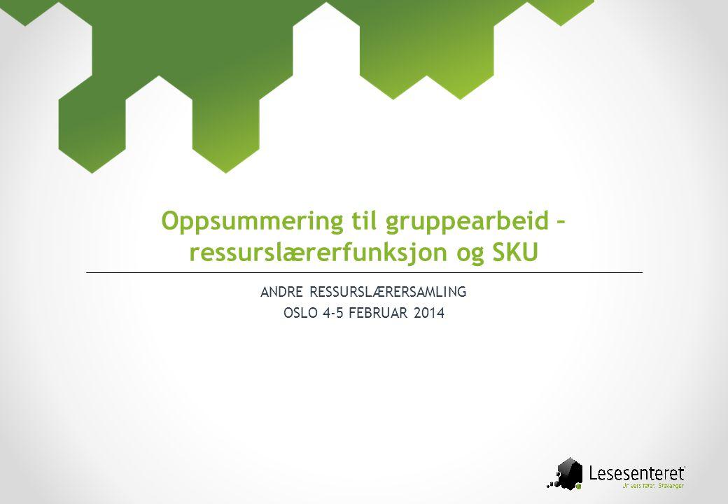 Oppsummering til gruppearbeid – ressurslærerfunksjon og SKU