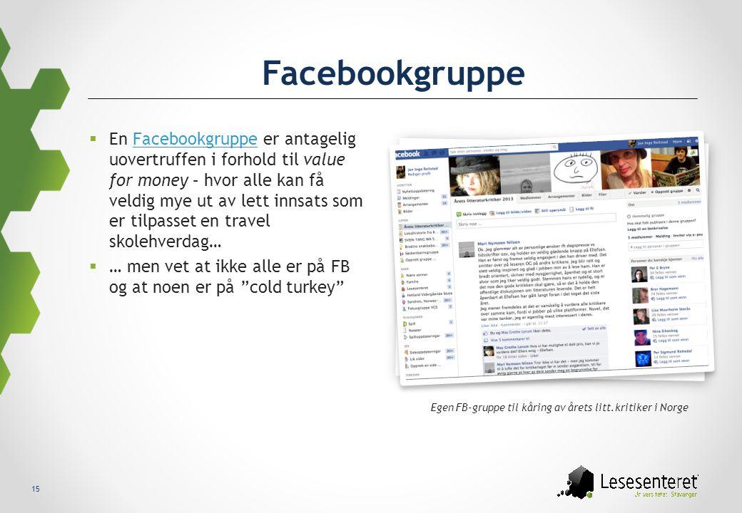 Egen FB-gruppe til kåring av årets litt.kritiker i Norge