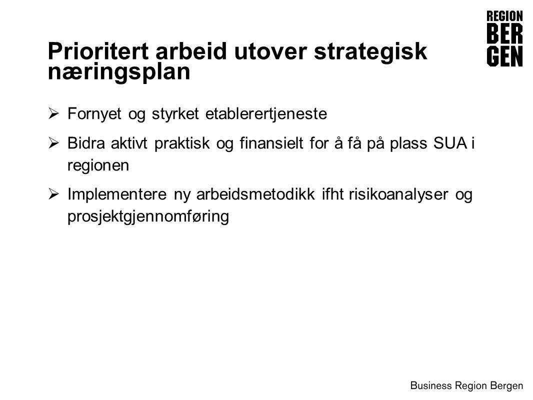 Prioritert arbeid utover strategisk næringsplan