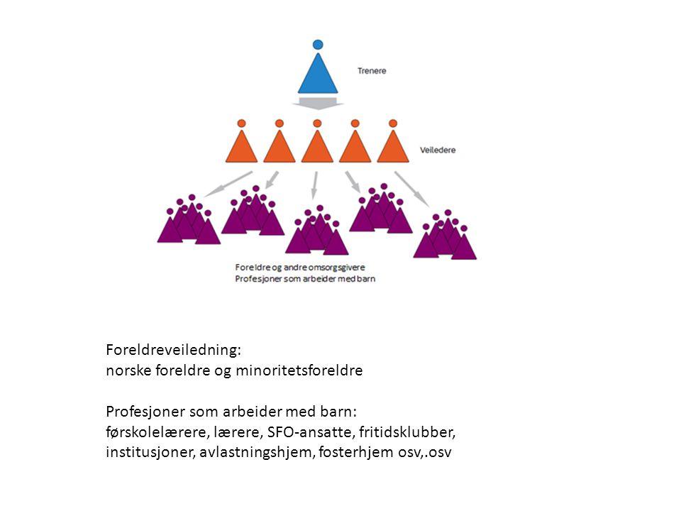 Foreldreveiledning: norske foreldre og minoritetsforeldre. Profesjoner som arbeider med barn: