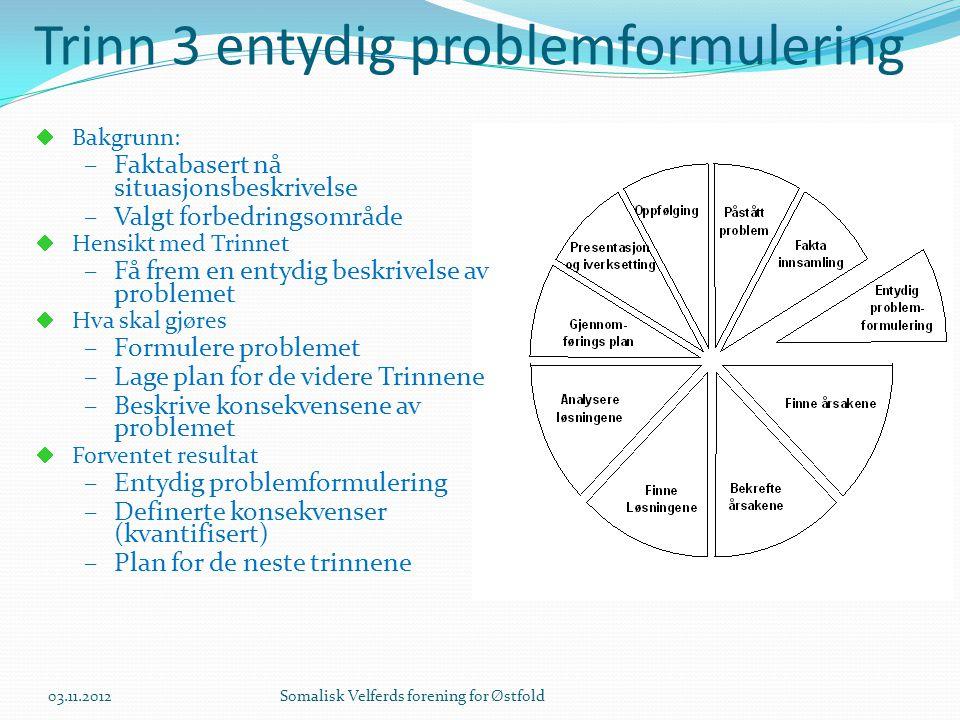 Trinn 3 entydig problemformulering