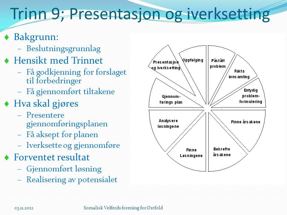 Trinn 9; Presentasjon og iverksetting