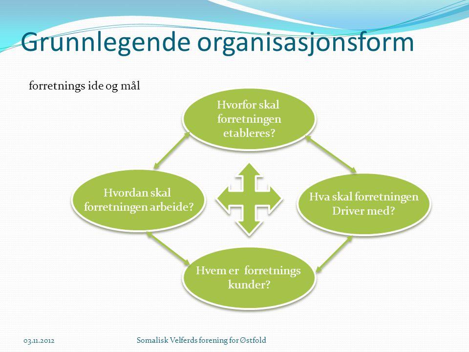 Grunnlegende organisasjonsform