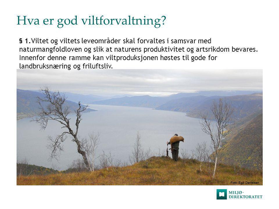 Hva er god viltforvaltning