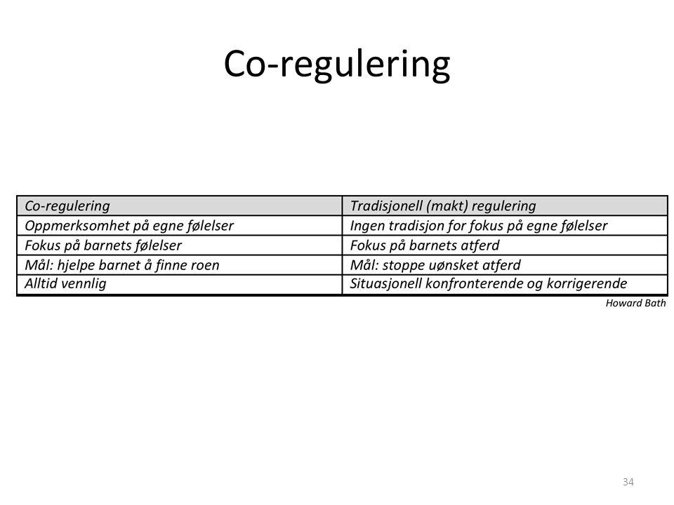 Co-regulering 1) Gå dernest igjennom følgende matrise og diskuter den i gruppen: