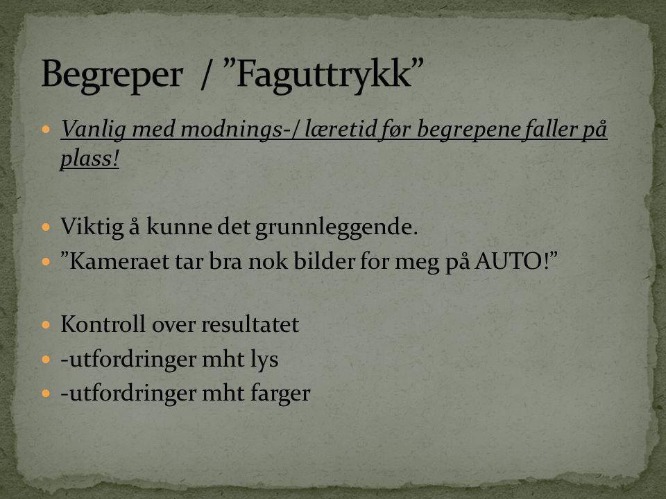 Begreper / Faguttrykk