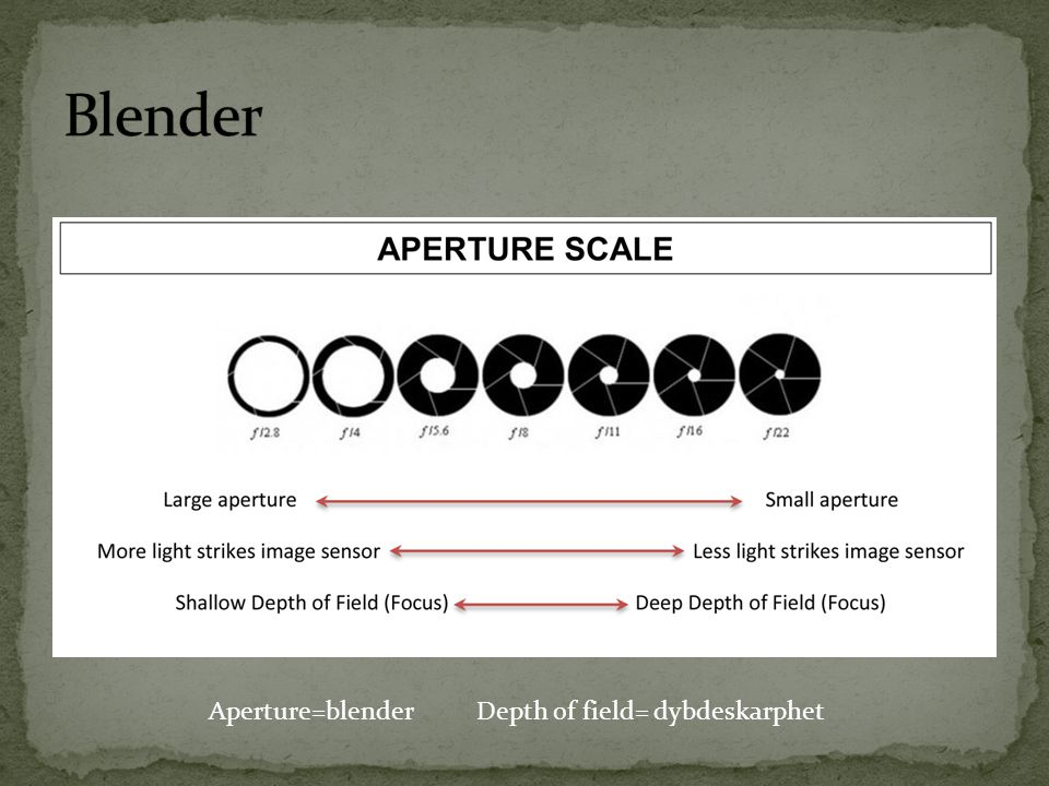 Aperture=blender Depth of field= dybdeskarphet