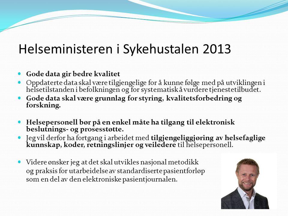 Helseministeren i Sykehustalen 2013