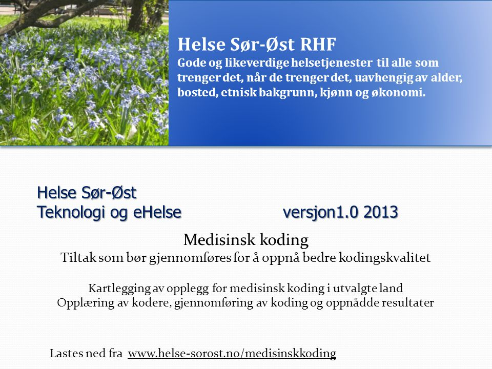 Helse Sør-Øst Teknologi og eHelse versjon1.0 2013