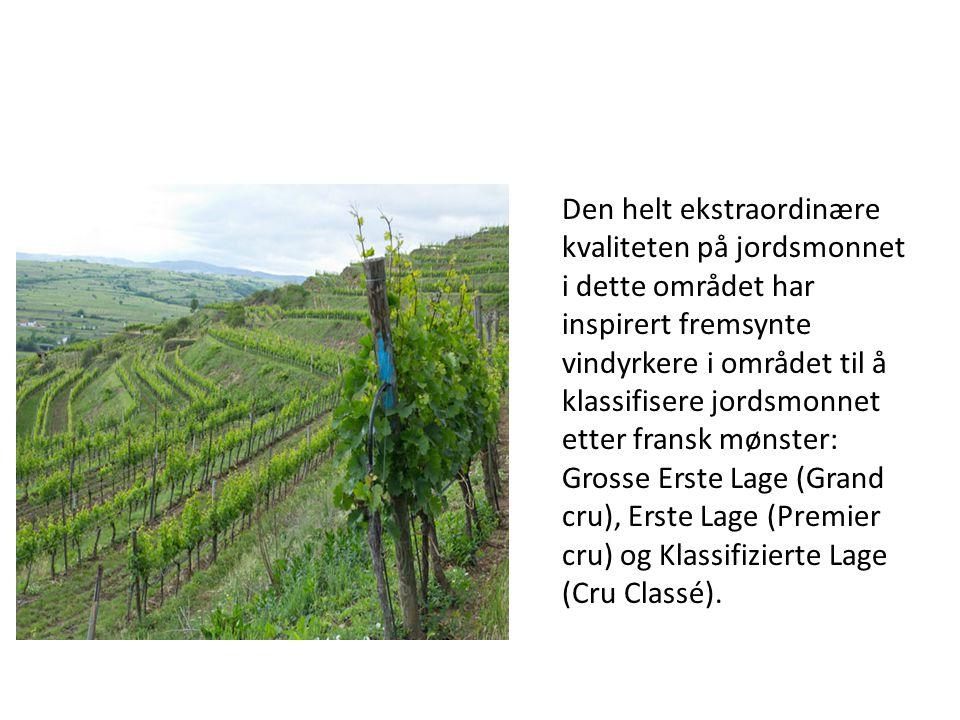 Den helt ekstraordinære kvaliteten på jordsmonnet i dette området har inspirert fremsynte vindyrkere i området til å klassifisere jordsmonnet etter fransk mønster: Grosse Erste Lage (Grand cru), Erste Lage (Premier cru) og Klassifizierte Lage (Cru Classé).