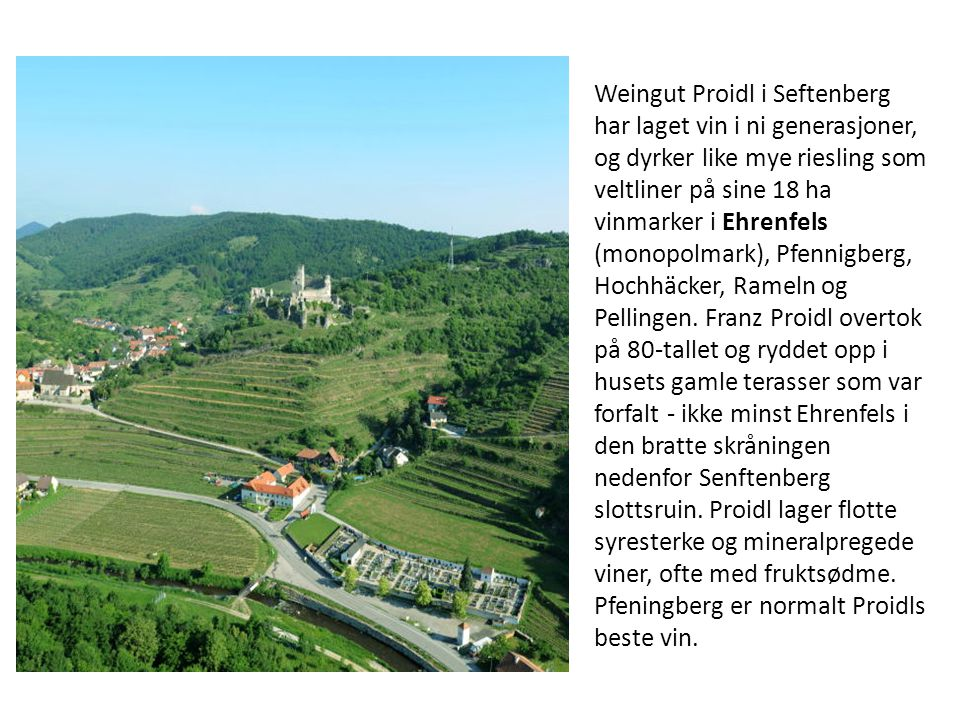 Weingut Proidl i Seftenberg har laget vin i ni generasjoner, og dyrker like mye riesling som veltliner på sine 18 ha vinmarker i Ehrenfels (monopolmark), Pfennigberg, Hochhäcker, Rameln og Pellingen.