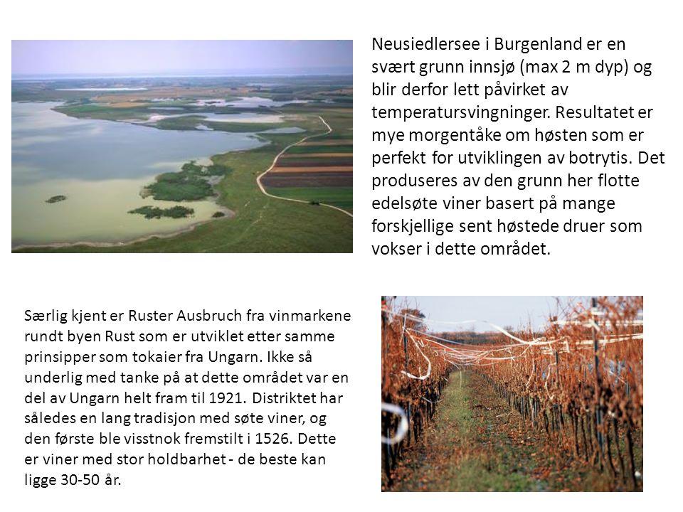Neusiedlersee i Burgenland er en svært grunn innsjø (max 2 m dyp) og blir derfor lett påvirket av temperatursvingninger. Resultatet er mye morgentåke om høsten som er perfekt for utviklingen av botrytis. Det produseres av den grunn her flotte edelsøte viner basert på mange forskjellige sent høstede druer som vokser i dette området.