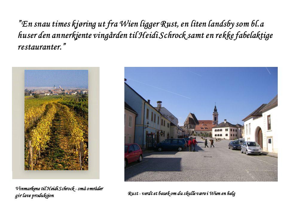 En snau times kjøring ut fra Wien ligger Rust, en liten landsby som bl.a huser den annerkjente vingården til Heidi Schrock samt en rekke fabelaktige restauranter.
