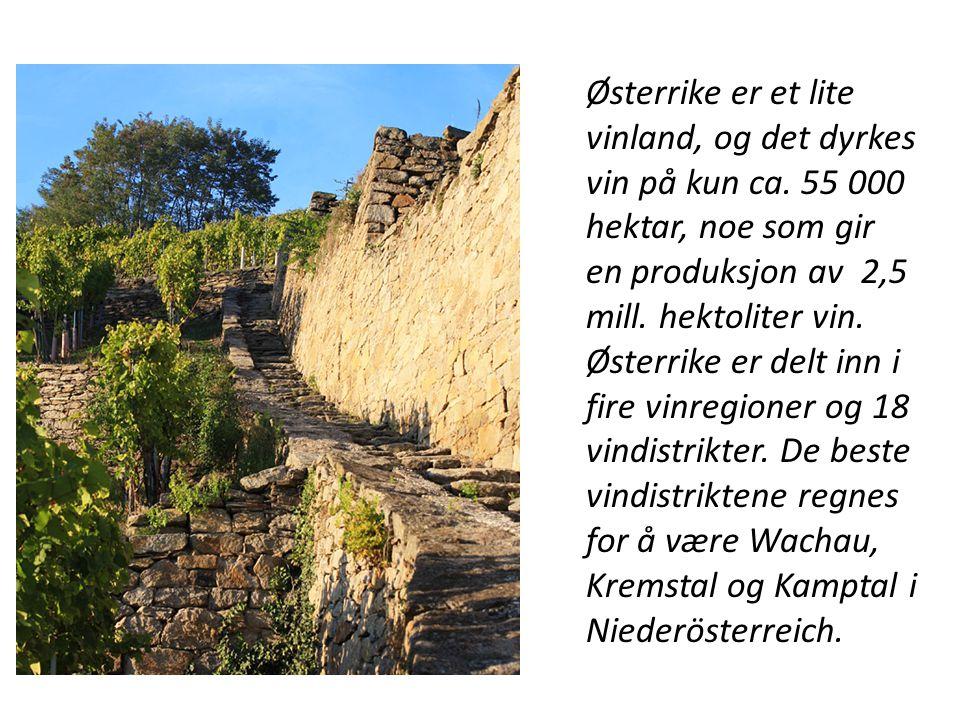 Østerrike er et lite vinland, og det dyrkes vin på kun ca