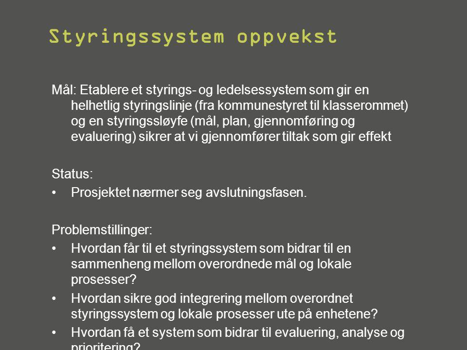 Styringssystem oppvekst