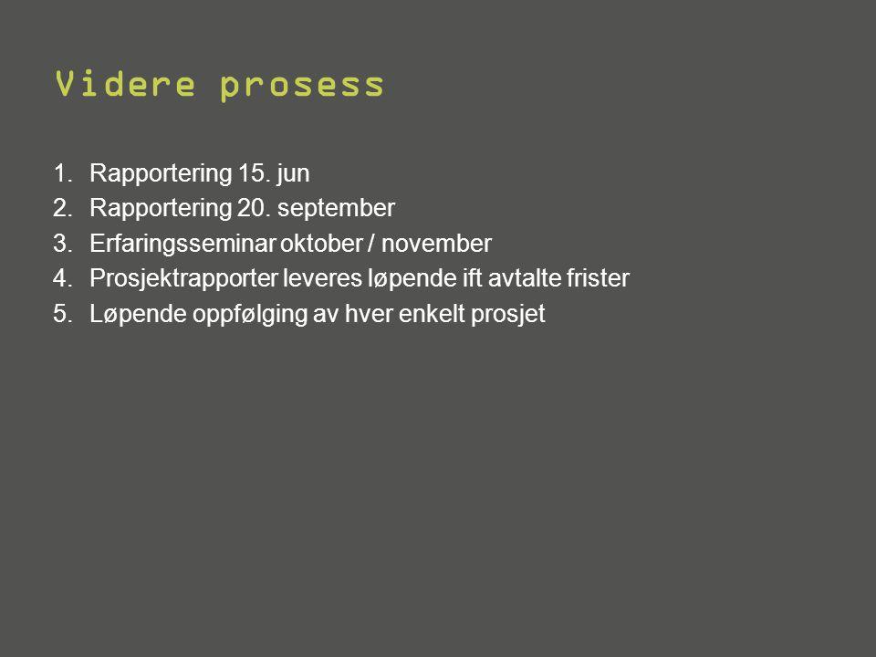 Videre prosess Rapportering 15. jun Rapportering 20. september