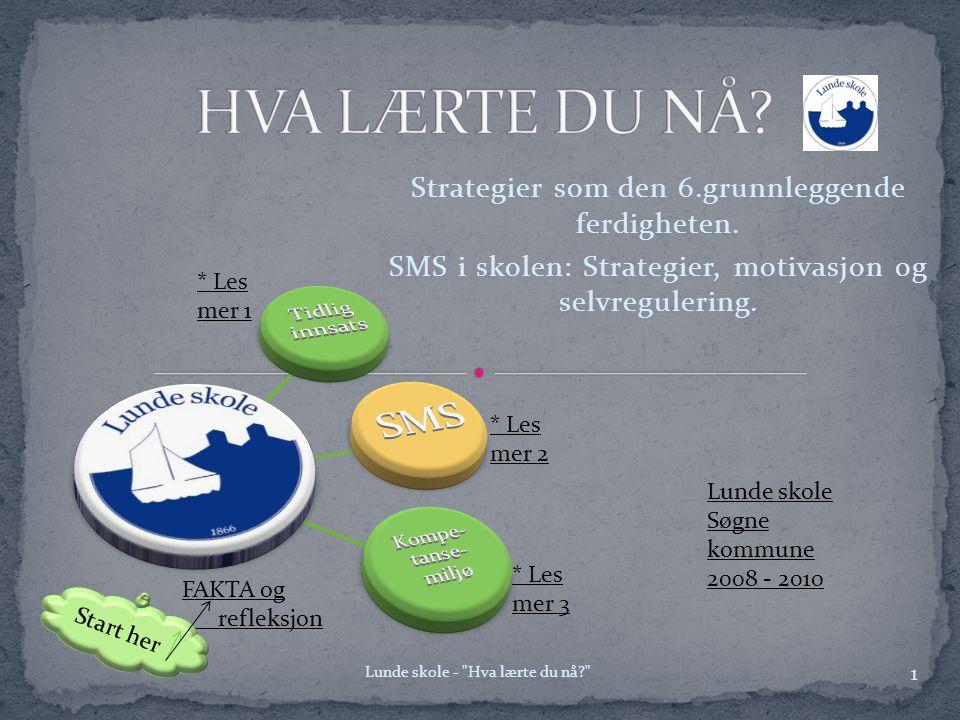 HVA LÆRTE DU NÅ SMS Strategier som den 6.grunnleggende ferdigheten.