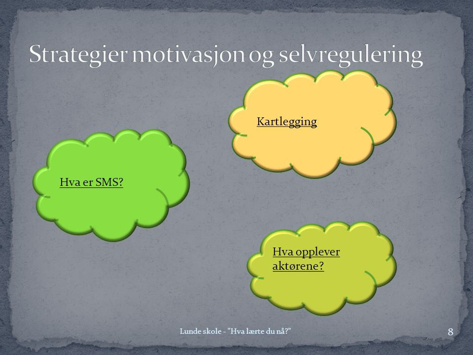 Strategier motivasjon og selvregulering