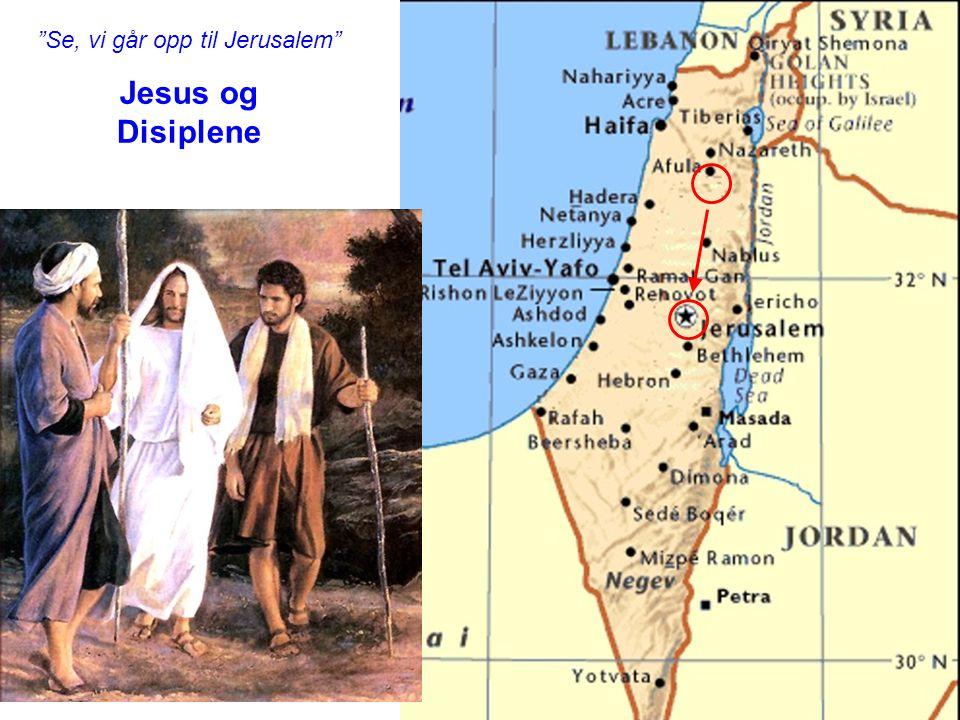 Se, vi går opp til Jerusalem