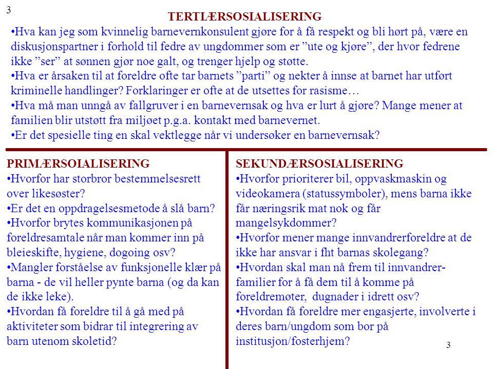 TERTIÆRSOSIALISERING