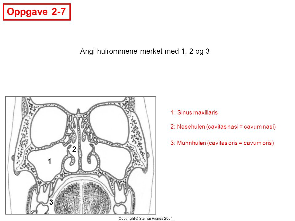 Oppgave 2-7 Angi hulrommene merket med 1, 2 og 3 2 1 3