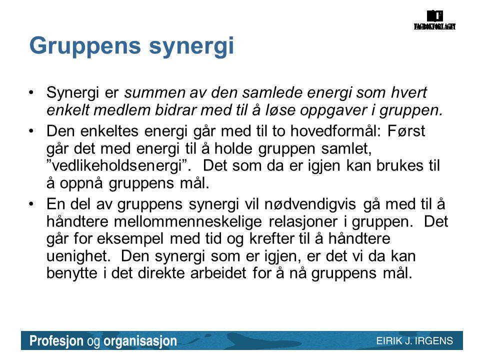 Gruppens synergi Synergi er summen av den samlede energi som hvert enkelt medlem bidrar med til å løse oppgaver i gruppen.