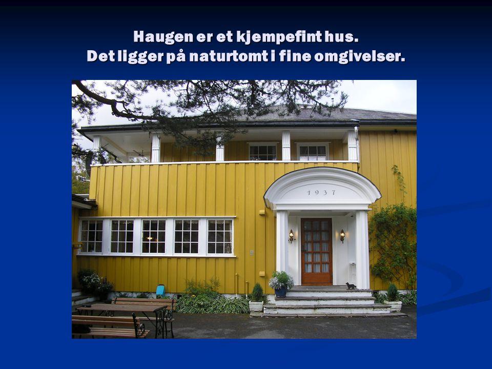 Haugen er et kjempefint hus. Det ligger på naturtomt i fine omgivelser.