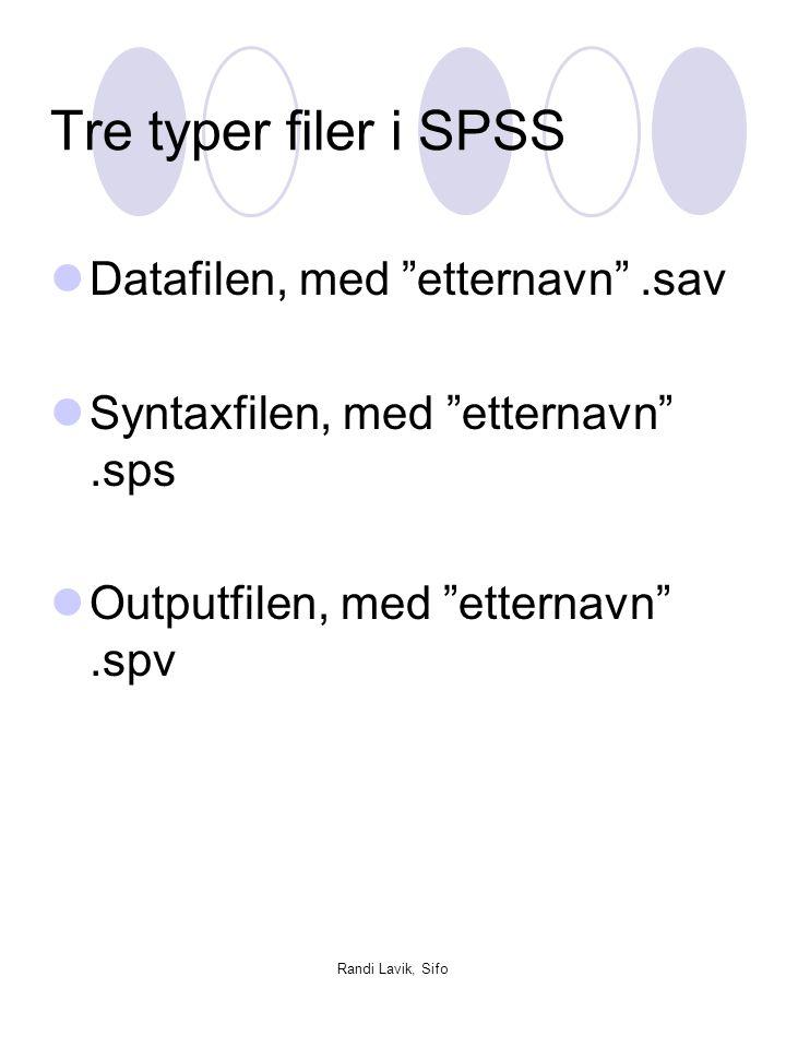 Tre typer filer i SPSS Datafilen, med etternavn .sav