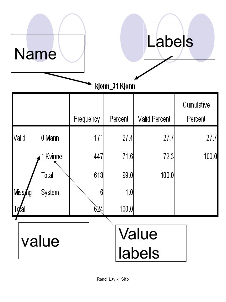 Labels Name value Value labels Randi Lavik, Sifo