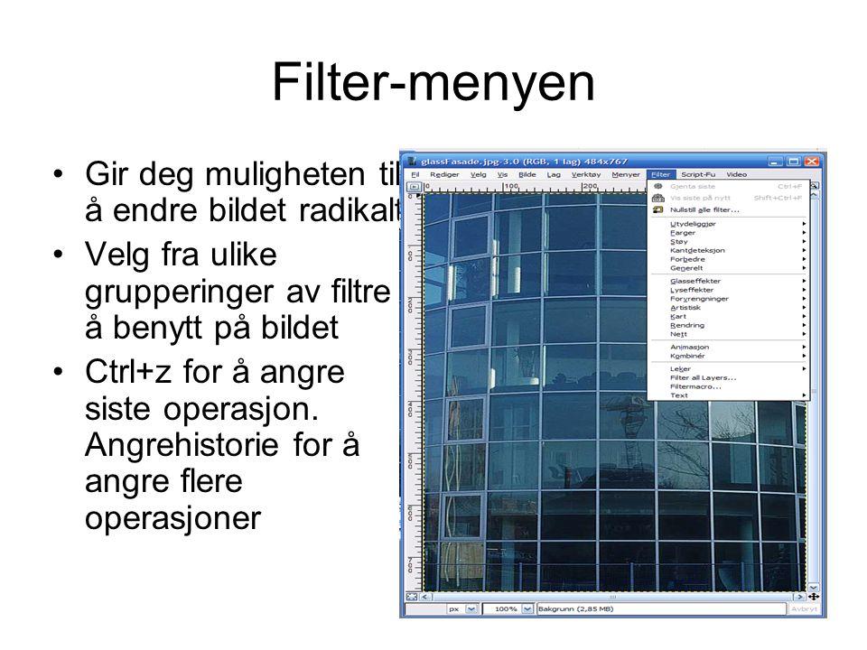 Filter-menyen Gir deg muligheten til å endre bildet radikalt