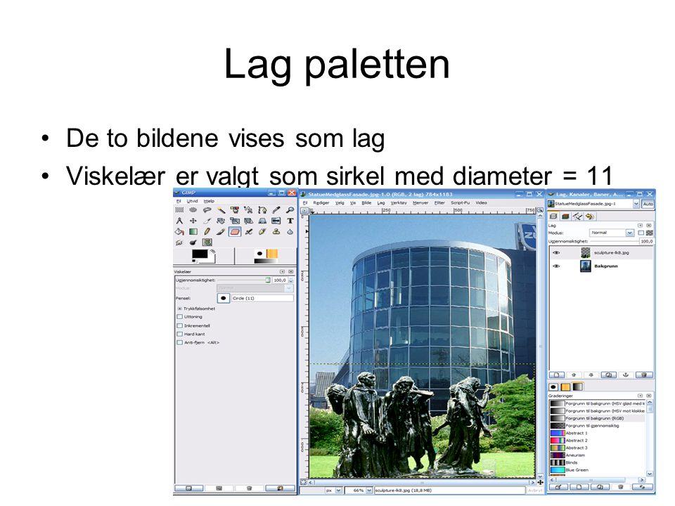 Lag paletten De to bildene vises som lag
