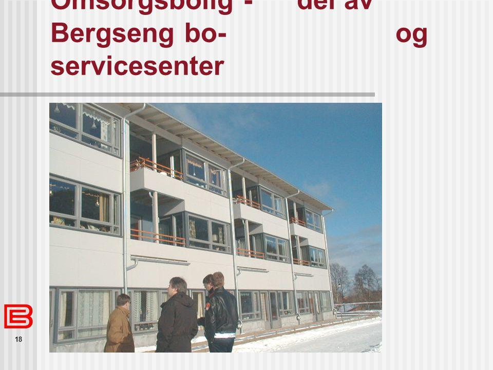 Omsorgsbolig - del av Bergseng bo- og servicesenter