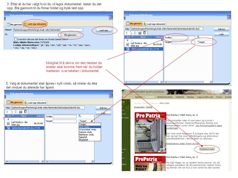 3. Etter at du har valgt hvor du vil lagre dokumentet, laster du det opp. Bla gjennom til du finner bildet og trykk last opp