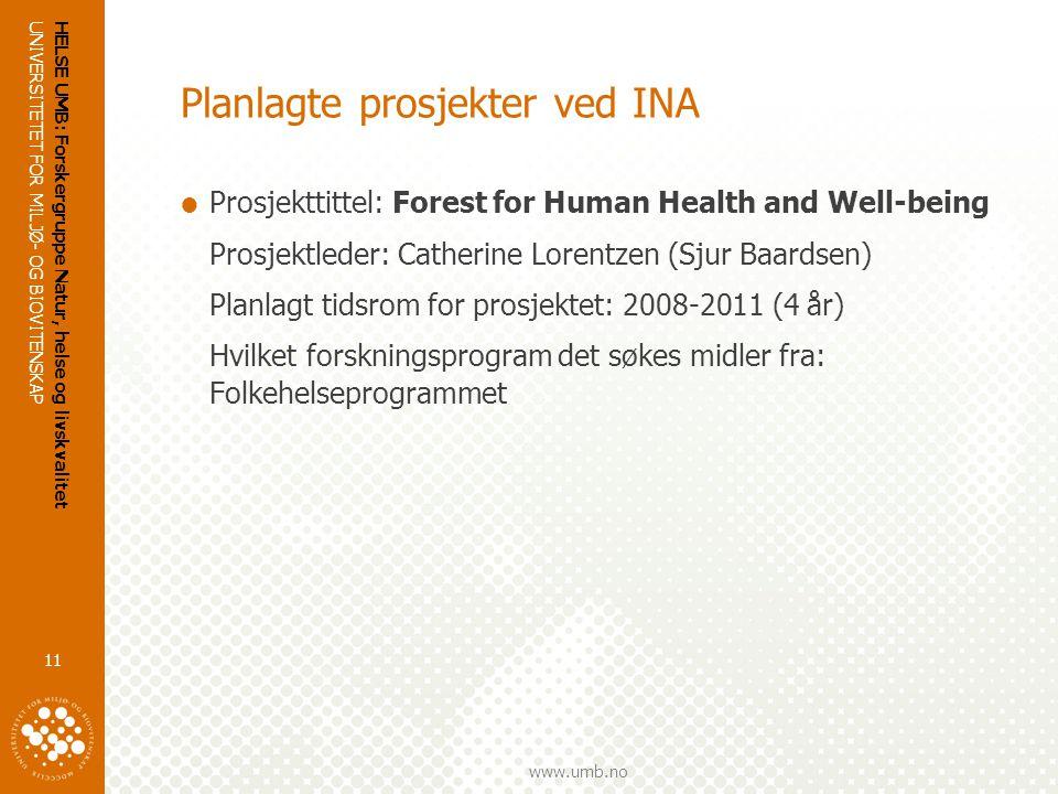 Planlagte prosjekter ved INA