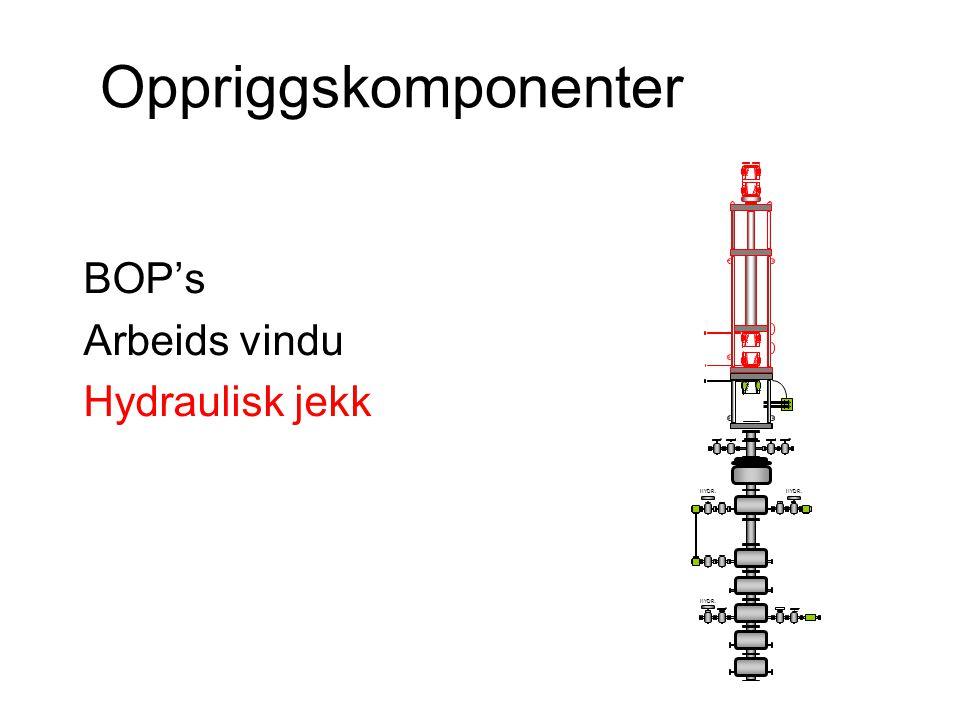 Oppriggskomponenter BOP's Arbeids vindu Hydraulisk jekk