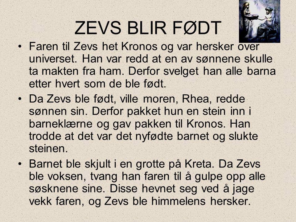 ZEVS BLIR FØDT