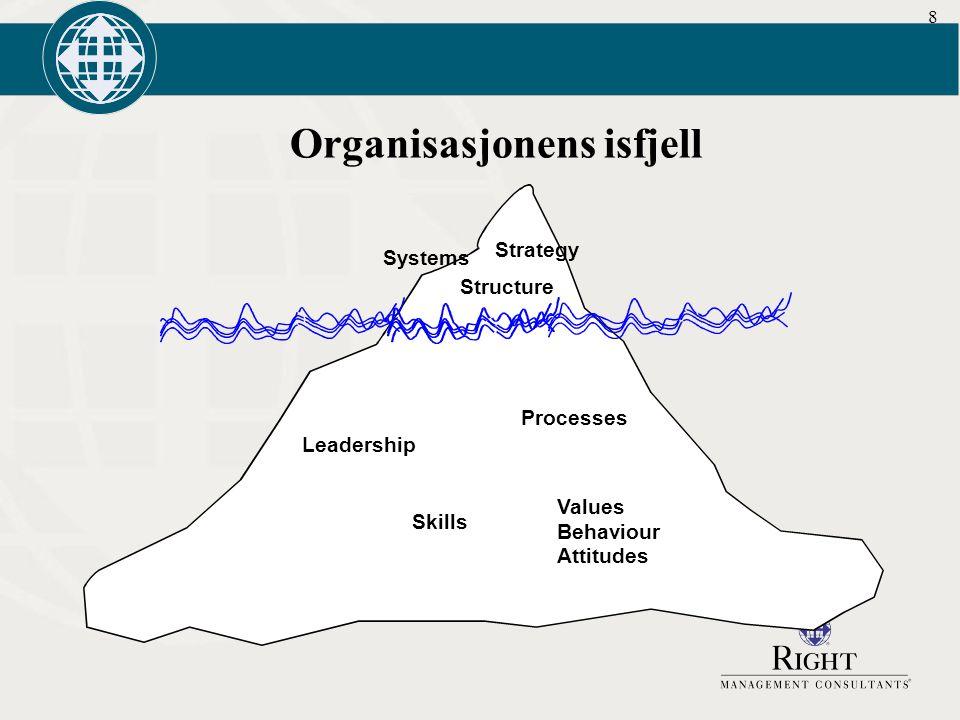 Organisasjonens isfjell