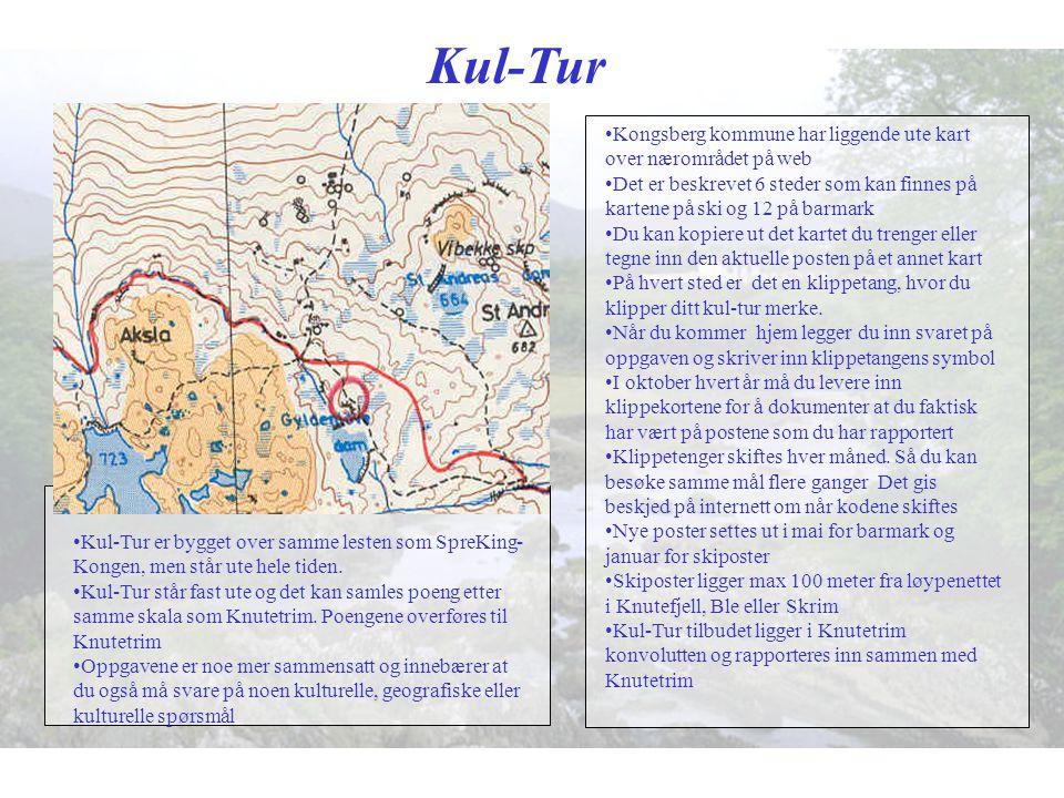Kul-Tur Kongsberg kommune har liggende ute kart over nærområdet på web