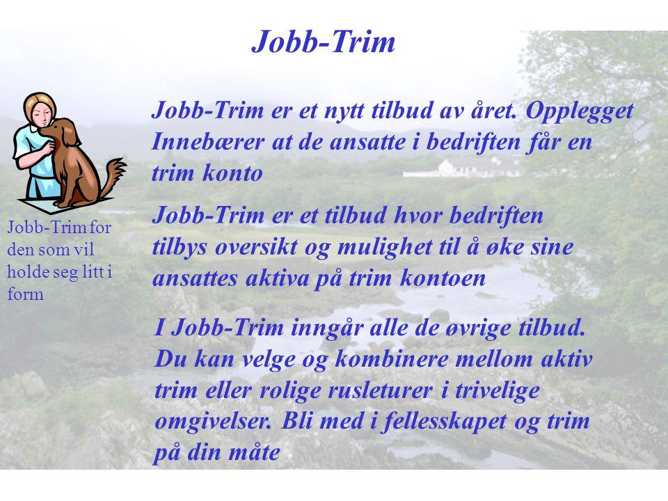Jobb-Trim Jobb-Trim er et nytt tilbud av året. Opplegget