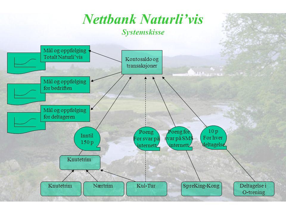 Nettbank Naturli'vis Systemskisse