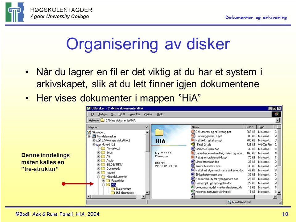 Organisering av disker