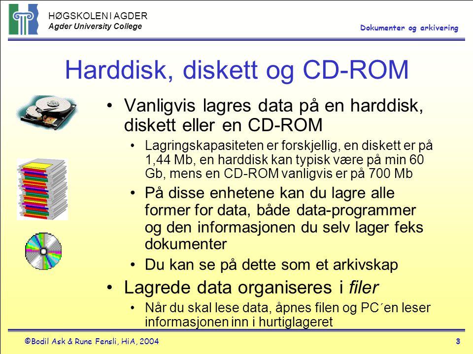 Harddisk, diskett og CD-ROM