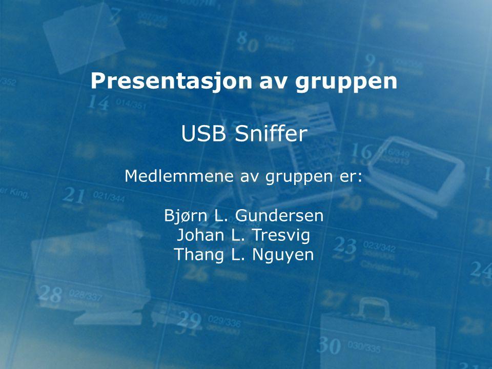 Presentasjon av gruppen