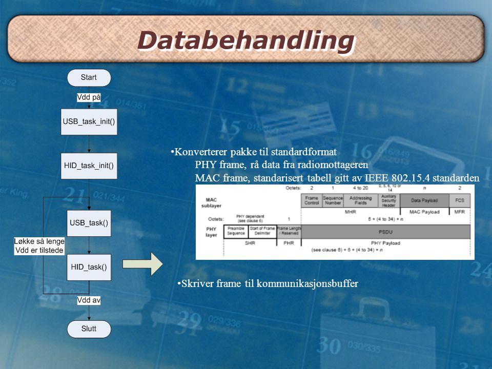 Databehandling Konverterer pakke til standardformat