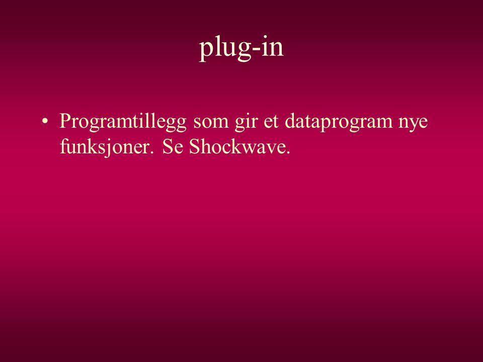 plug-in Programtillegg som gir et dataprogram nye funksjoner. Se Shockwave.